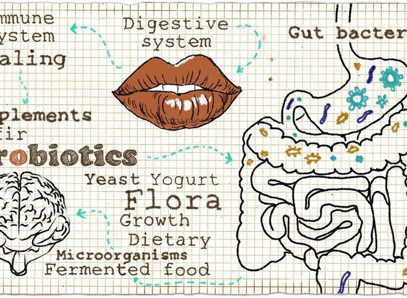 Attività probiotiche