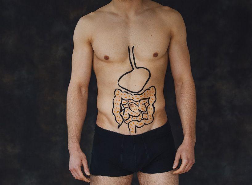La flora batterica intestinale e i probiotici