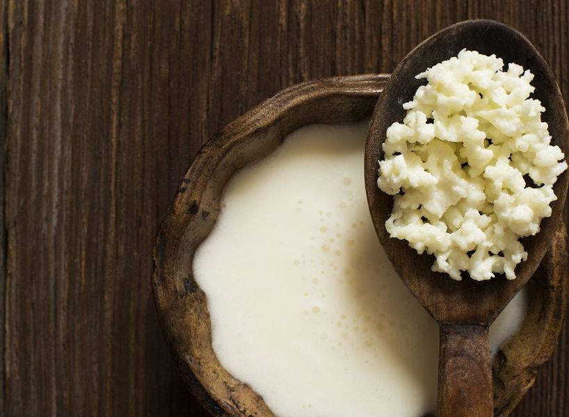 Microflora specifica isolata dai grani di kefir