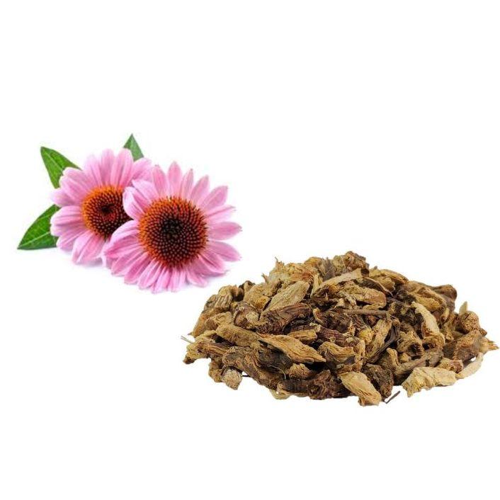 Echinacea Taglio Tisana