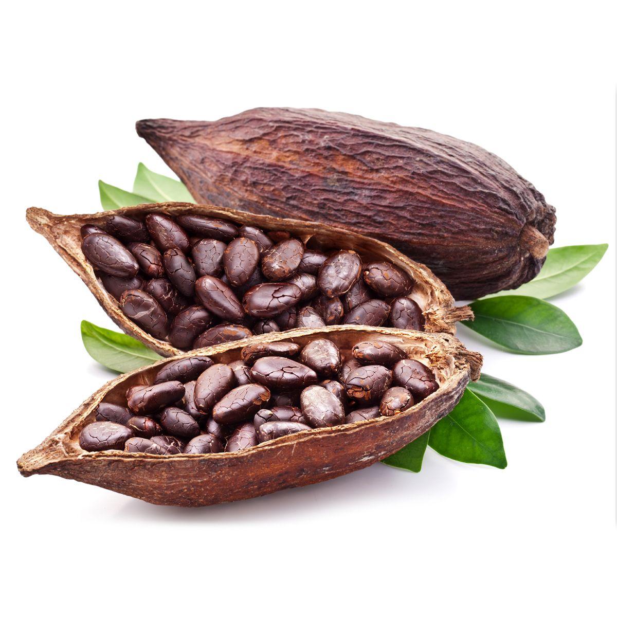 Fave di Cacao intere tostate