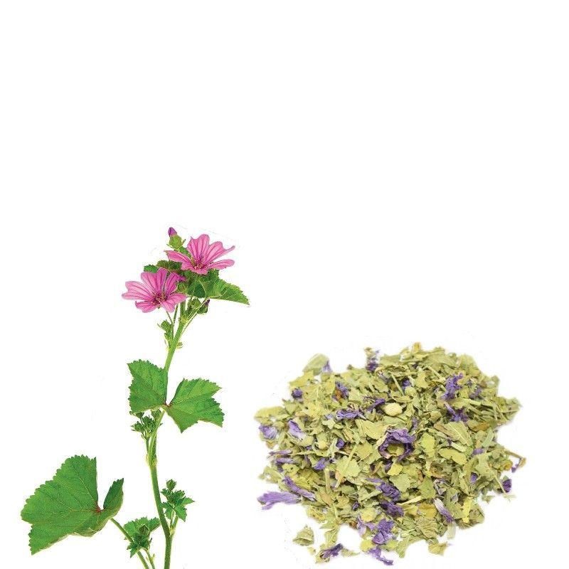 Malva fiori e foglie in taglio tisana