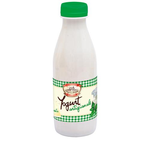 Yogurt alla Menta da 500g