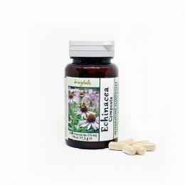 Echinacea composta