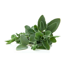 Salvia soluzione idroalcolica da pianta fresca